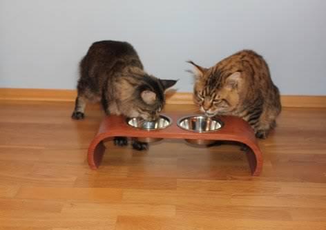 Подставка под миски для кошек 158