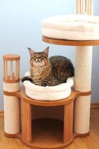 Домики для кошек - купить в интернет магазине